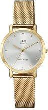 Q&Q QA21-001